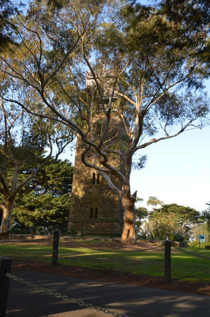 kangarooground8